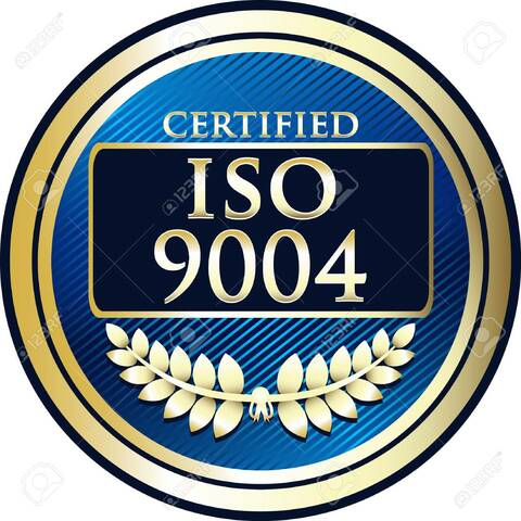 ISO 9004: 2009