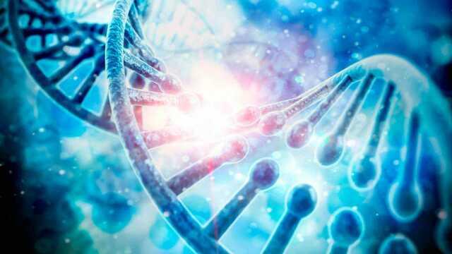 Se logra la secuencia completa del genoma humano.