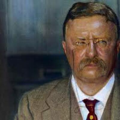 Teddy Roosevelt Timeline Project