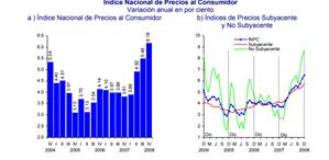 Evolución de la inflación 2008