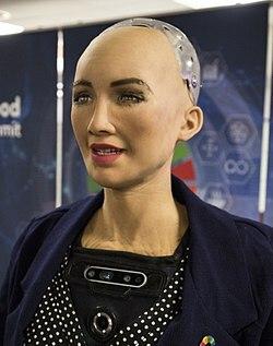 Robot humanoide ginoide capaz de reconocer, recordar caras y simular expresiones.