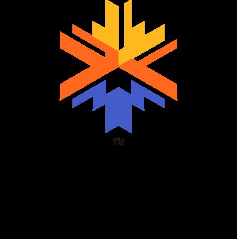 Olympiske vinterleker i Salt Lake City