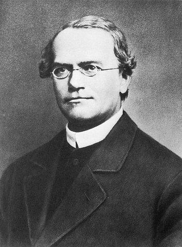 Gregor Johann Mendel (1862-1884)