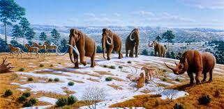 pleistoceno inferior