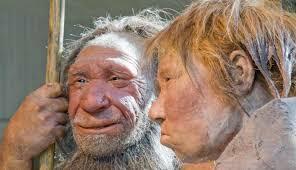 Homo sapiens subsp. Denisova