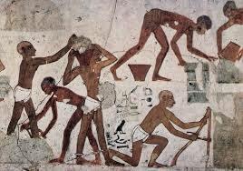 Edad Egipcia