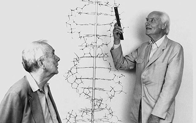 Estructura del material genètic