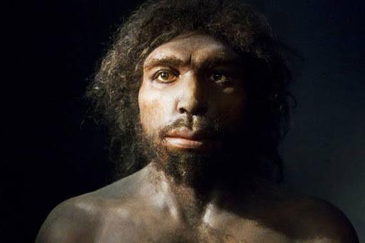 Homo antecessor (900 mil anys)