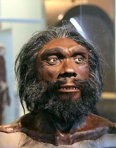 Homo heidelbergensis (800 mil anys)