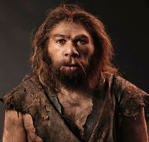 Homo neanderthalensis (230 mil anys)