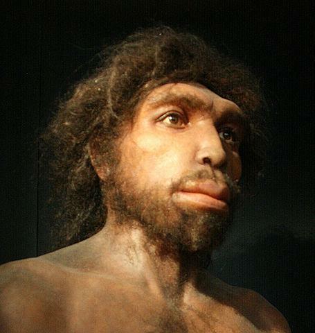 Homo rhodesiensis (600 mil anys)