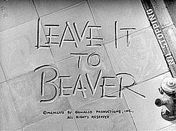 •Leave it to Beaver First Airs on TV (1957)