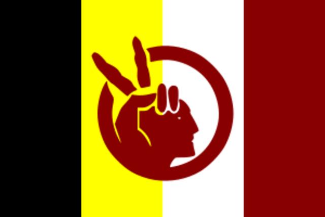 America Indian Movement
