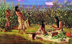 El inicio de la agricultura y el asentamiento  en aldeas