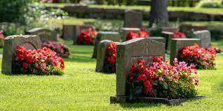 Muerte de el tío más querido