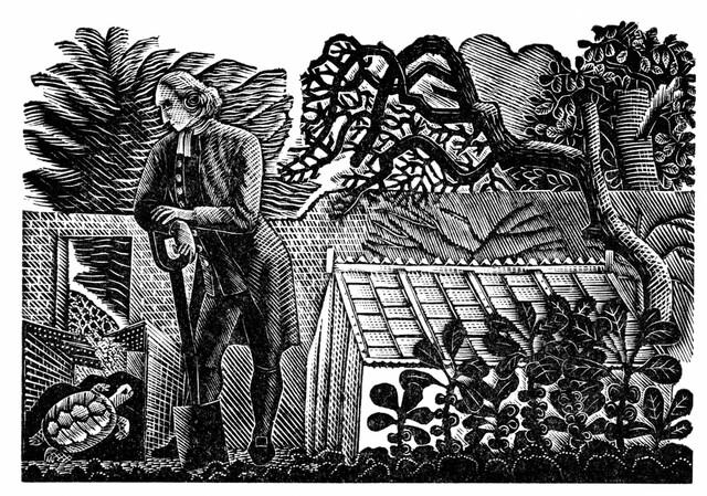 Gilbert White, Primer Ecólogo de Inglaterra
