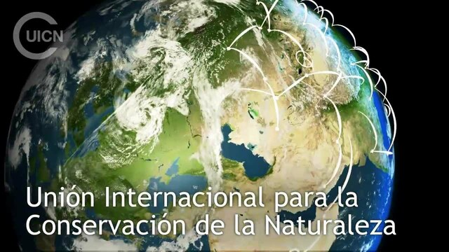 La UICN