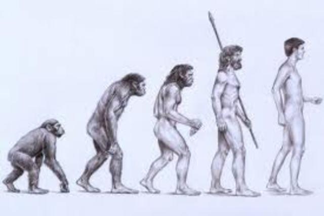 Beggining of evolution thinking