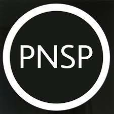 Creación del Partido Nacional de Salvación Pública