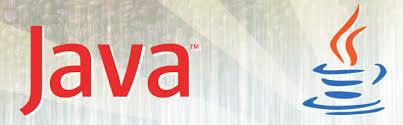 Surge un desarrollo llamado JAVA