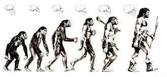 LES ESPÈCIES NO ES MANTENEN ESTÀTIQUES EN EL TEMPS, SINÓ QUE EVOLUCIONEN.