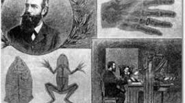 Línea de Tiempo historia de la Protección Radiológica timeline