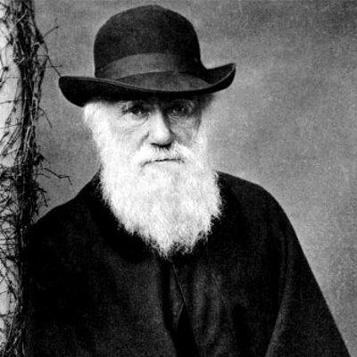La vida de Darwin. Arianne i Gorka timeline
