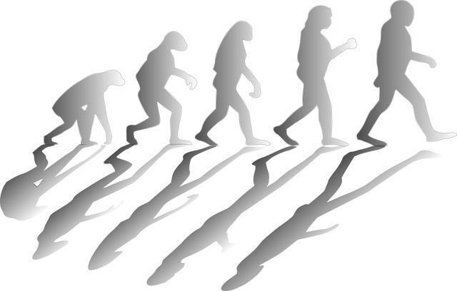La evolución de las especies