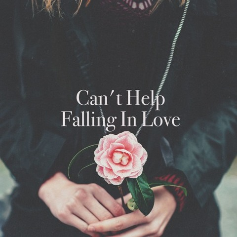 Can't help falling love