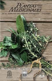 Declaración sobre el uso continuo de herbolaria medicinal