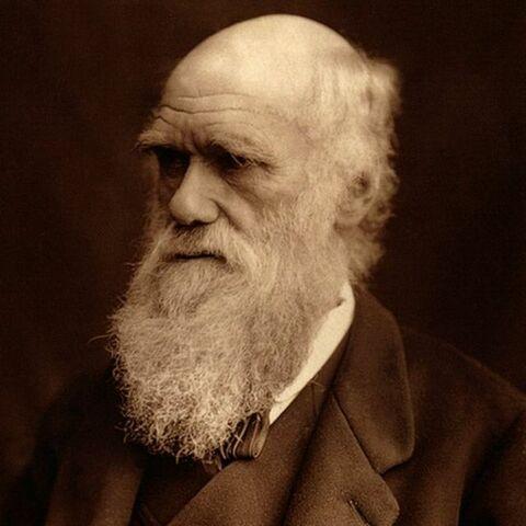 Darwin y Sexualidad