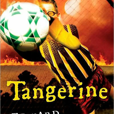 Tangerine by Edward Bloor timeline