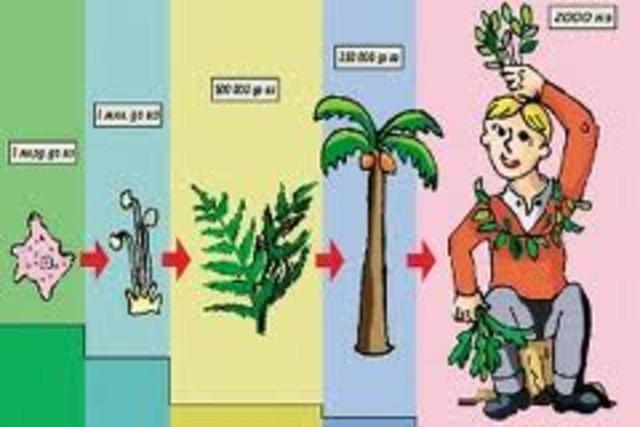 Основание Биологии