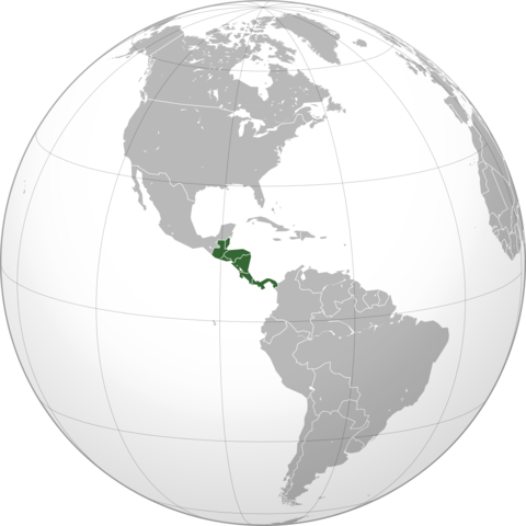 Auge de cooperativas en America central