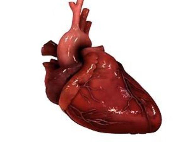 Первая пересадка сердца и печени.