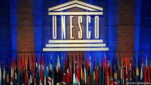 La Unesco define el dominio de la educación especial