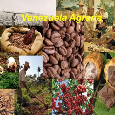 Historia y evolución del espacio agrario de Venezuela timeline