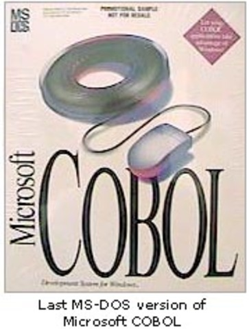 The Common Business-Oriented Language (COBOL) programming language is invented.