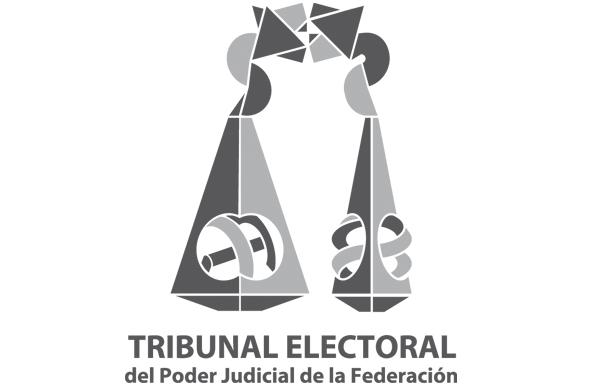 El Tribunal Federal Electoral.