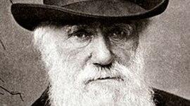 Vida Darwin timeline