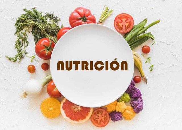 División de la Nutrición en cuatro tipos
