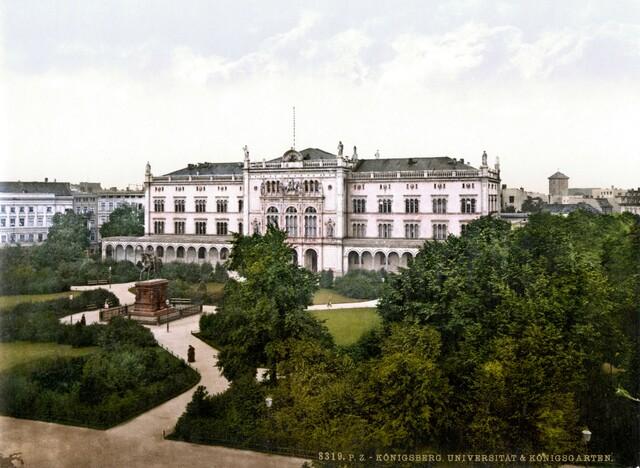Estudis a la Universitat de Königsberg