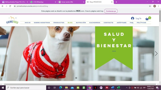 Proyecto e-commerce