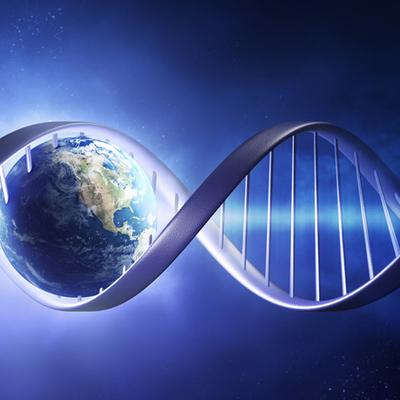 Livets evolusjonshistorie timeline