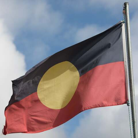 Federal government helps the Aborigines