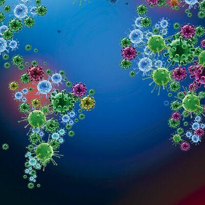 Historia  de  la Epidemiología timeline