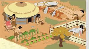 Comença la agricultura i la ramaderia