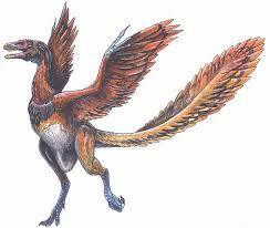 Jordas første fugler