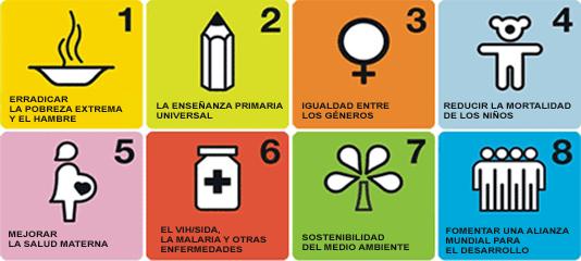 Objetivos del Desarrollo del Milenio (ODM)
