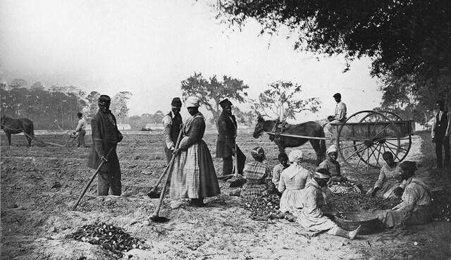 Abolición de la esclavitud en Cuba y creación del sistema de transición de Patronato.
